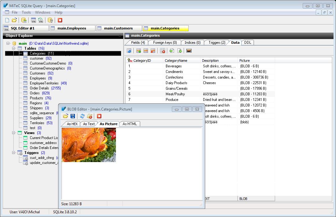 SQLite Query screenshot