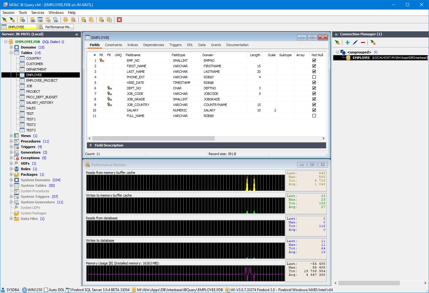 Full Interbase Query screenshot