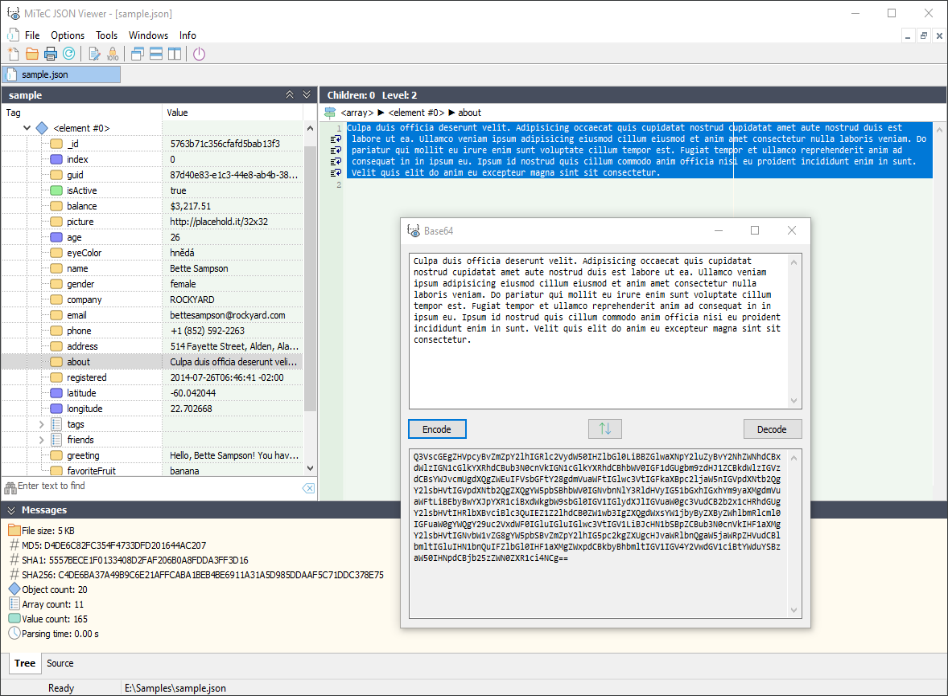JSON Viewer screenshot